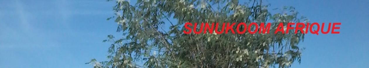 SUNUKOOM.COM     AFRIQUE